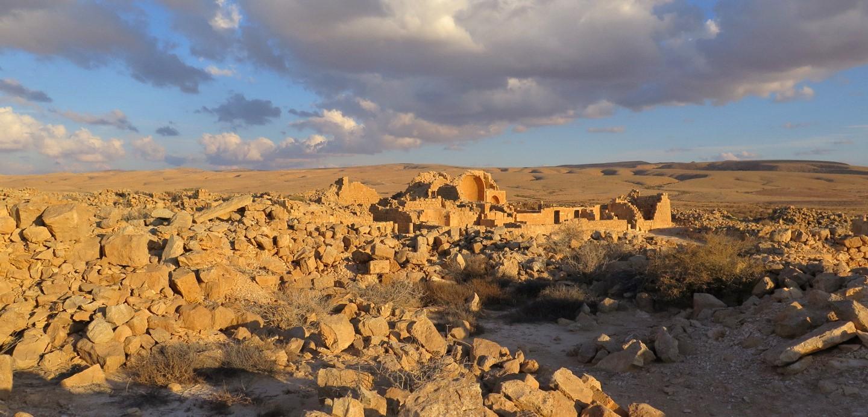 The Roman Negev as a Mediterranean Society