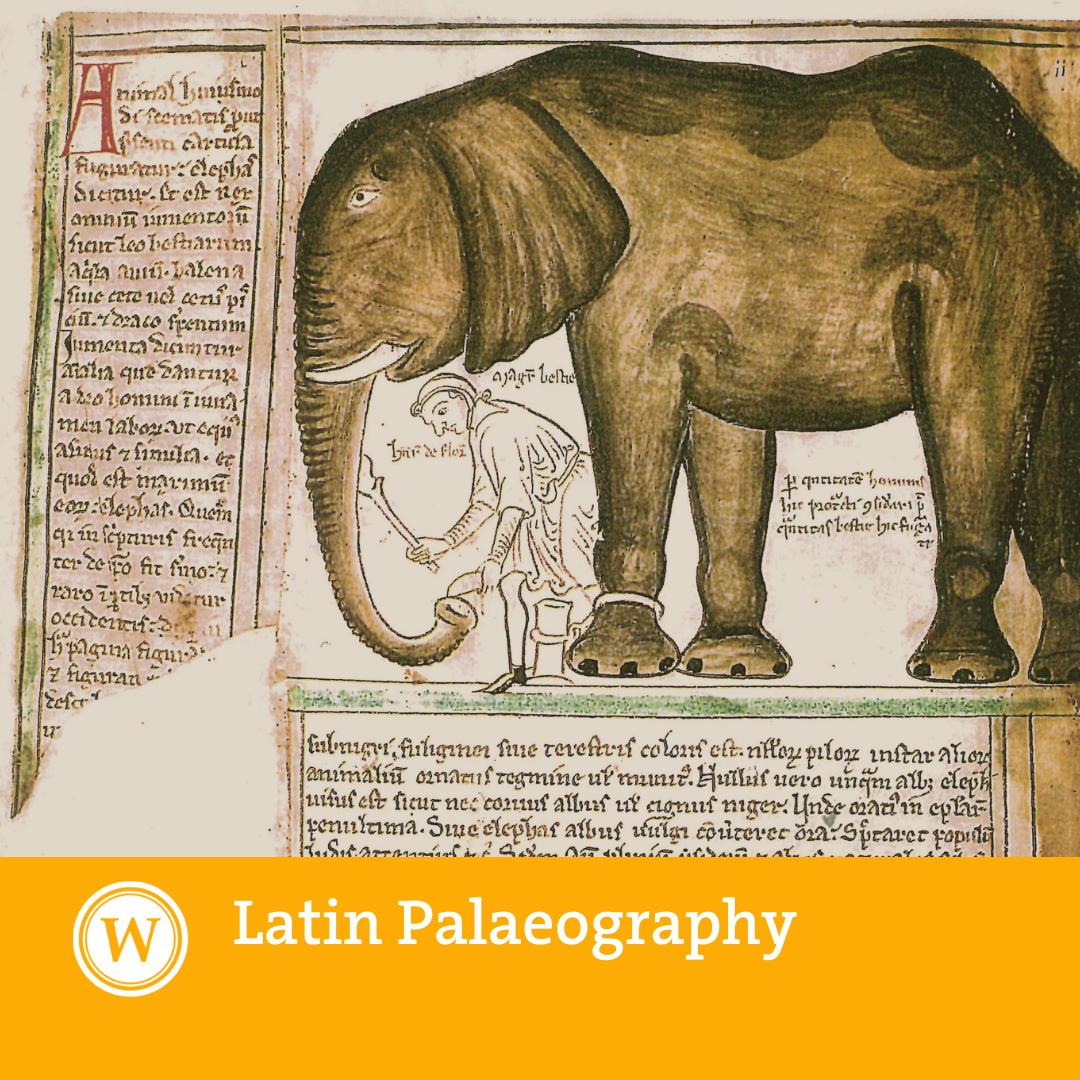 Latin Palaeography (Summer 2021)