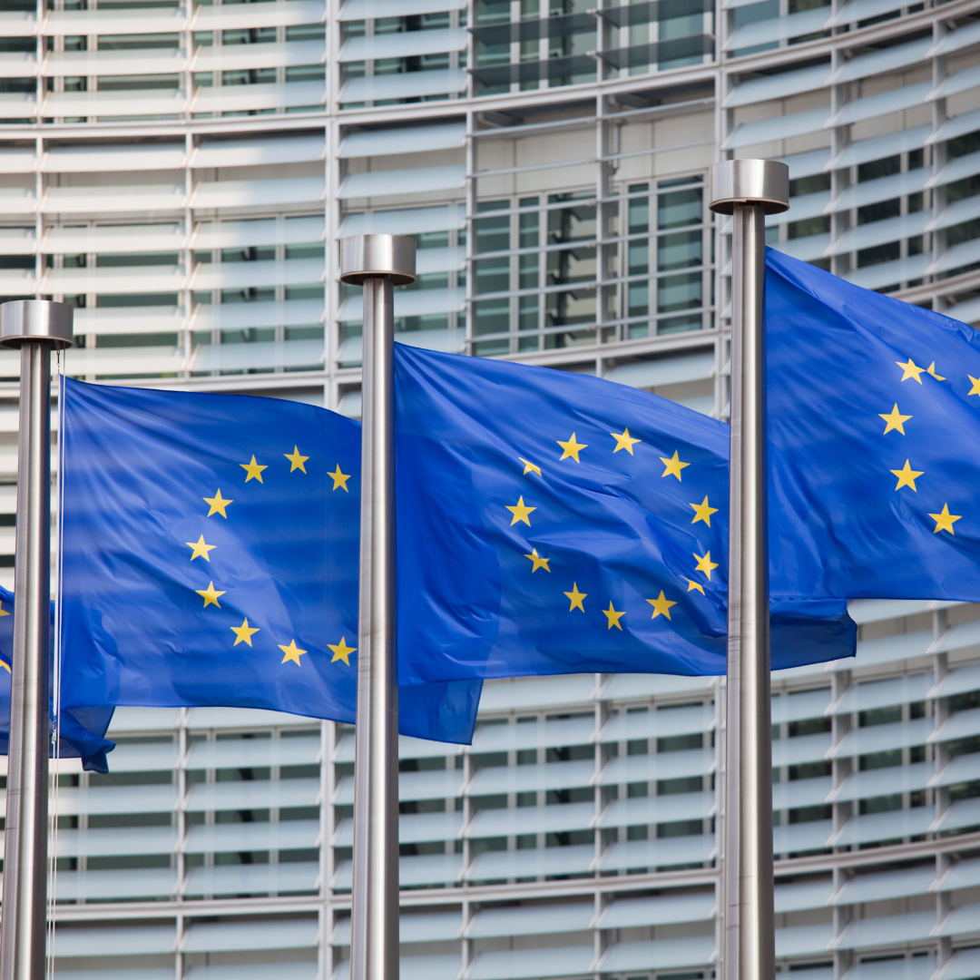 Human Rights in the European Union's Foreign Policy